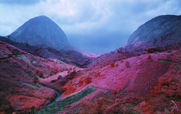 The Enclave, Richard Mosse