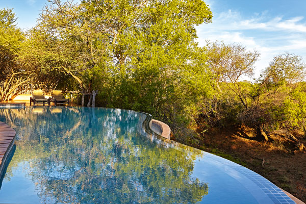 Makanyane Lodge South Africa